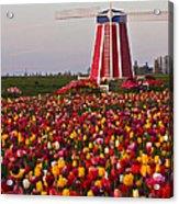 Windmill Of Flowers Acrylic Print