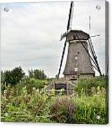 Windmill Of Kinderdijk Acrylic Print