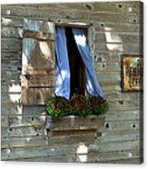 Window And Flowerbox Acrylic Print