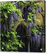 Window Behind Wisteria Acrylic Print