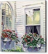 Window Boxes Acrylic Print by David Lloyd Glover