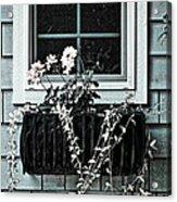 Window Dresser Acrylic Print by Bonnie Bruno