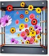 Window Of Flowers Acrylic Print