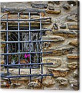 Window Of Vernazza Italy Dsc02629 Acrylic Print