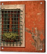 Window Of Vernazza Italy Dsc02633 Acrylic Print