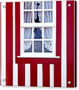 Window On Stripes Acrylic Print by Carlos Caetano