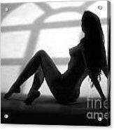 Window Silhouette  Acrylic Print