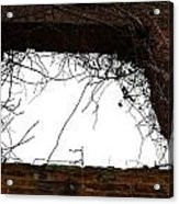 Window Through Time Acrylic Print