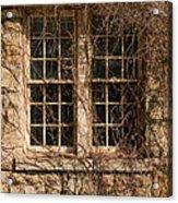 Windows And Weeds Acrylic Print