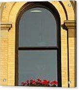 Windowsill Gerraniums Acrylic Print