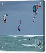 Windsurfing Hawaii Acrylic Print