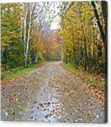 Windy And Rainy Fall Day Acrylic Print