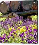 Wine Barrels At V. Sattui Napa Valley Acrylic Print by Michelle Wiarda