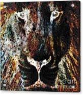 Winged Lion Acrylic Print