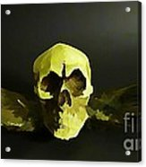 Winged Skull Two Acrylic Print