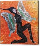 Wings 4  Acrylic Print