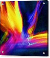 Wings Of Color Abstract  Acrylic Print