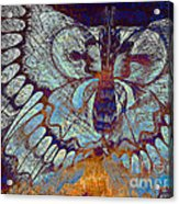 Wings Of Destiny Acrylic Print by Christopher Beikmann