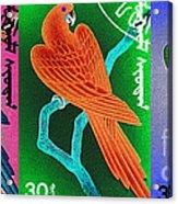 Wings Of Paradise Acrylic Print