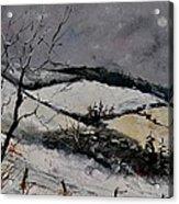 Winter 4531 Acrylic Print