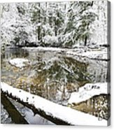 Winter Along Cranberry River Acrylic Print by Thomas R Fletcher
