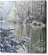 Winter Along Williams River Acrylic Print by Thomas R Fletcher