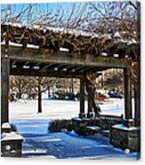 Winter Arbor Acrylic Print