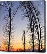 Winter At Dusk Acrylic Print