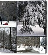 Winter At Petrifying Springs Park Acrylic Print