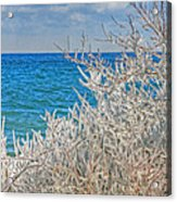 Winter Beach Acrylic Print