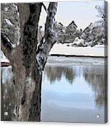 Winter Beauty Acrylic Print