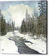 Winter Beauty  Acrylic Print by Dianne  Lacourciere