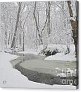 Winter Blizzard Acrylic Print