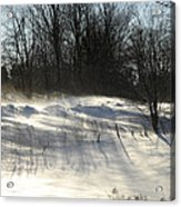 Winter Breeze Acrylic Print