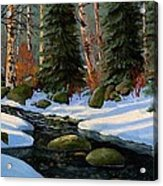 Winter Brook Acrylic Print