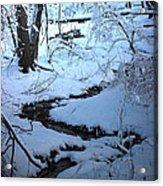 Winter Brook Acrylic Print