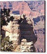 Winter Canyon Acrylic Print