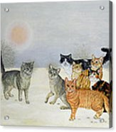 Winter Cats Acrylic Print