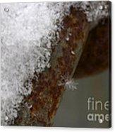 Winter Coat Acrylic Print