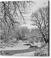 Winter Creek In Black And White Acrylic Print