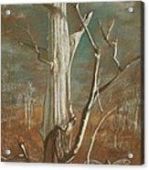 Winter Dance Acrylic Print