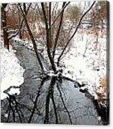 Winter Ditch Acrylic Print
