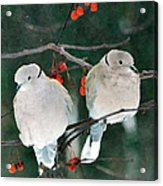 Winter Doves Acrylic Print