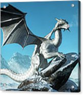Winter Dragon Acrylic Print