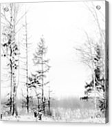 Winter Drawing Acrylic Print
