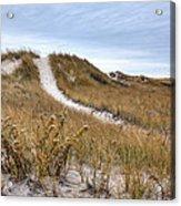 Winter Dune Acrylic Print