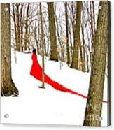 Winter Empress Acrylic Print