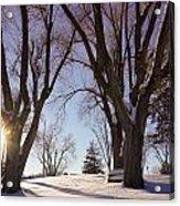 Winter Evening Acrylic Print
