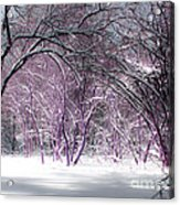 Winter Faeries Acrylic Print