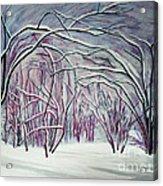 Winter Fairies Acrylic Print